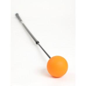 Orange Whip Trainer (OWT)