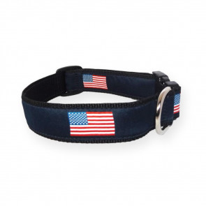 American Flag Dog Collar (DC)